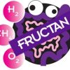 Fructan Substrate - 4 Gram Packets