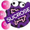 Sucrose Substrate - 25 Gram Packets