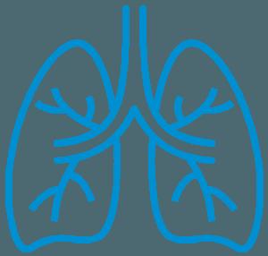Lung B