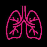 Lungs e1565894782611