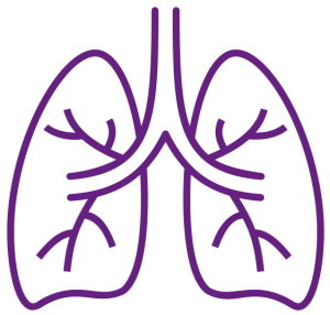 Lungs baby